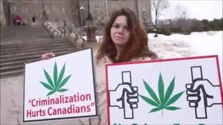 Ottawa Citizen 'Princess of Pot' Jodie Emery opens a Cannabis Culture shop on Bank Street by Pot TV