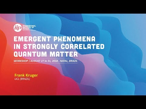 Fluctuation driven ordering phenomena in strongly correlated metals - Frank Kruger
