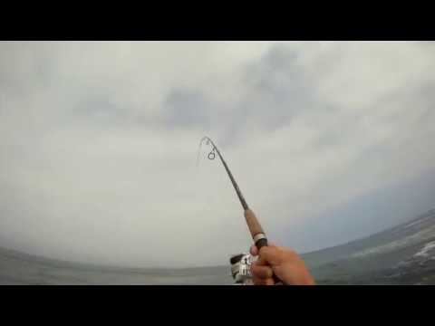 Surf/Jetty Fishing – San Diego, CA 2011