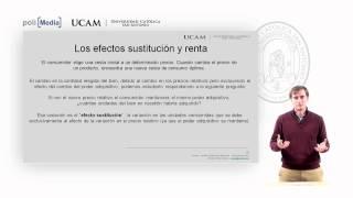 Microeconomía I - La Teoría De La Demanda (3) - Alfonso Rosa García