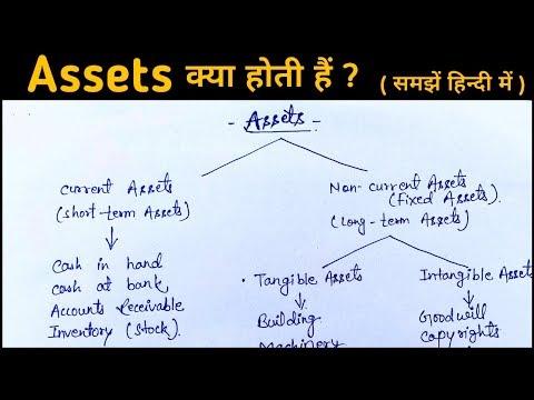Assets किसे कहते हैं ? Assets कितने प्रकार के होतें हैं ? II Assets and its types ? II