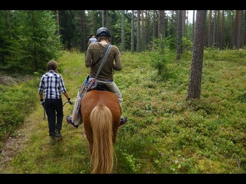 Horseback riding and boating adventures #OutdoorsFinland