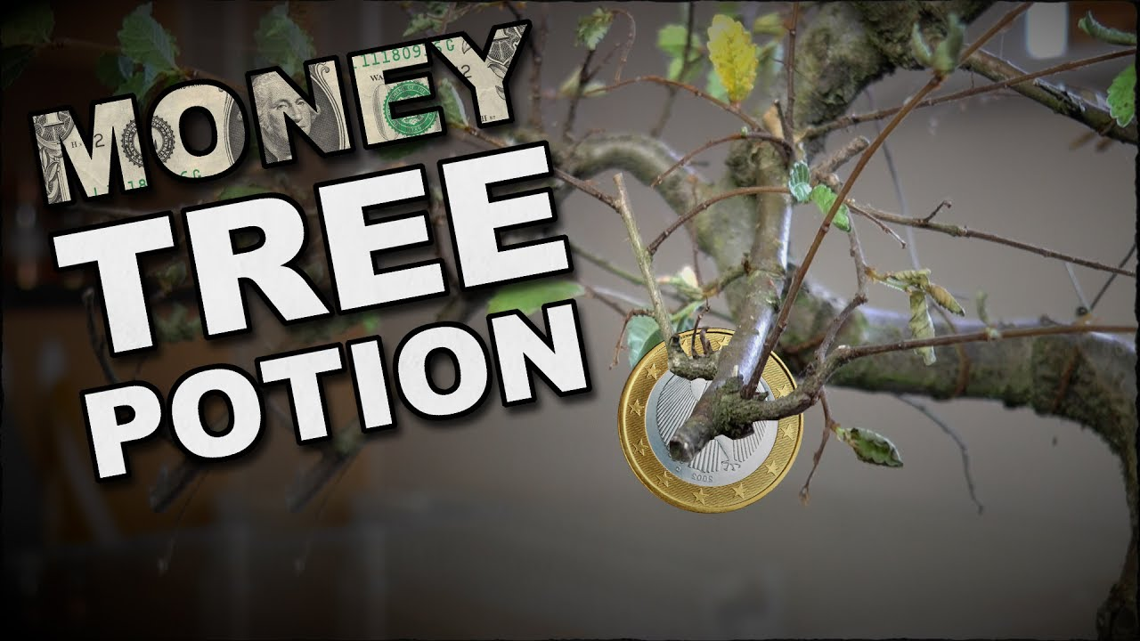 How To Make A Money Tree Potion
