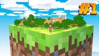 Minecraft Skyblock BUT it's on one block.. #1