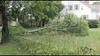 Tornado strikes Cape Cod