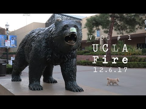 UCLA Fire | 12.6.17