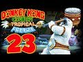 Let's Play Donkey Kong Country Tropical Freeze Part 23: Aggro Milka-Eisbär