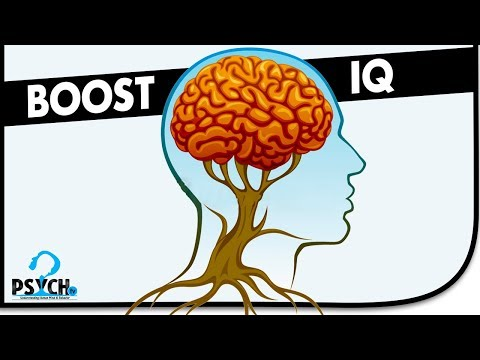 The SECRET Ways to Increase Your Intelligence