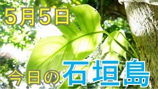 5月5日の石垣島天気