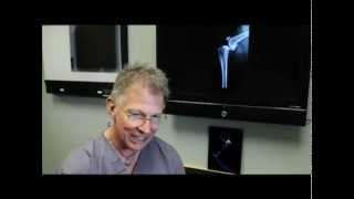 Canine ACL Tears discussed by Michael Bauer DVM, DACVS