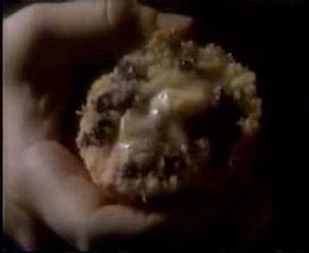 Pepperidge Farm Muffin Commercial (1985)