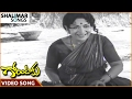 Gorintaku Movie    Gorinta Poochindhi Video Song    Shobhan Babu, Sujatha    Shalimar Songs