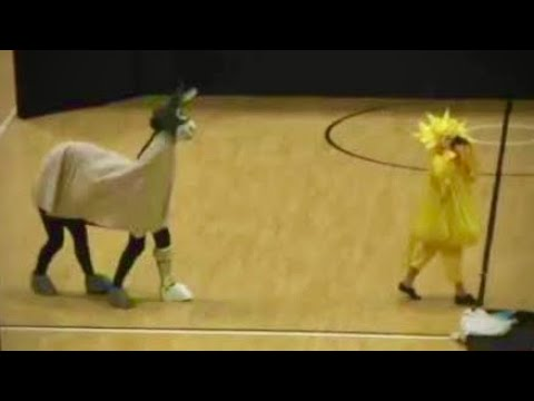 craigsmithkiwi - Wonky Donkey and Yellow Bird Dance Craig Smith Katz Cowley Dance music fun.