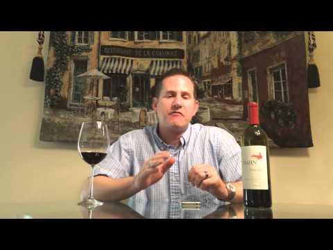 Vivino Wine Rating App Review - Vino Paraiso Wine Store