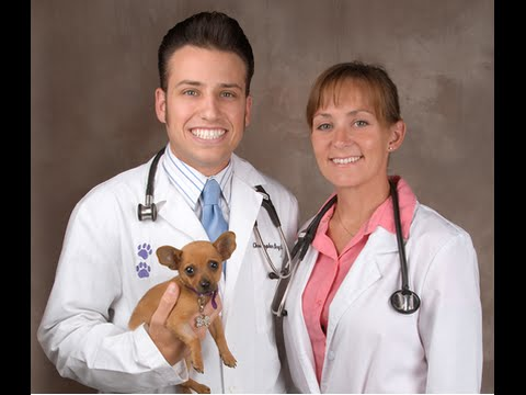 Rancho Regional Veterinary Hospital REVIEWS Rancho Cucamonga, CA Animal Hospital Reviews