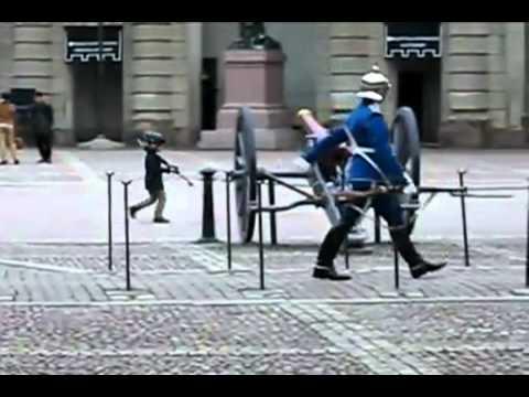 Boy mirrors Swedish guard