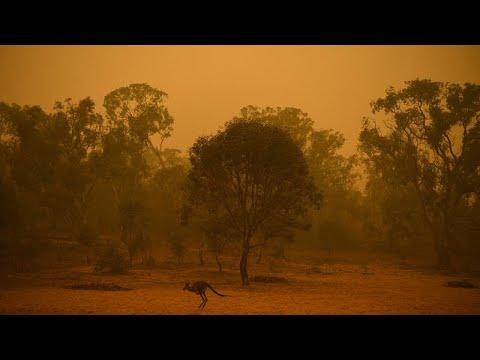 Αυστραλία: Πύρινος εφιάλτης δίχως τέλος