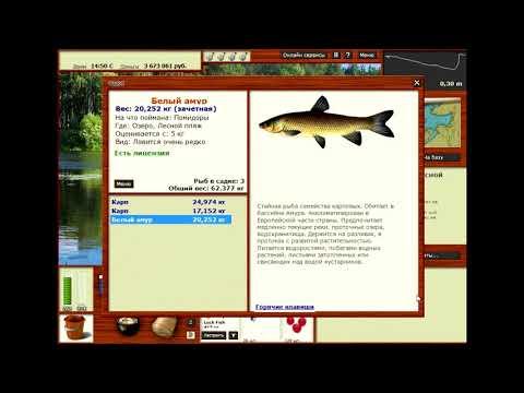где что ловится в русской рыбалке 3.1