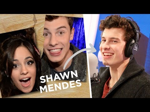 Shawn Mendes Clears Up Camila Cabello Collab Rumours