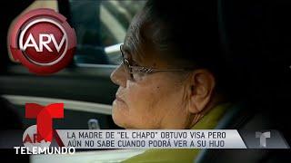 Aprueban visa humanitaria a mamá de El Chapo Guzmán | Al Rojo Vivo