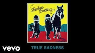 True Sadness (Official Audio)Available on the new album True SadnessDownload Here: http://republicrec.co/TrueSadness Keep up with The Avett Brothers:http://www.theavettbrothers.com https://www.facebook.com/theavettbrothers https://twitter.com/theavettbros https://www.instagram.com/theavettbrothers Music video by The Avett Brothers performing True Sadness.  © 2016 Republic Records, a Division of UMG Recordings, Inc. (American Recordings)http://vevo.ly/2nTtJf