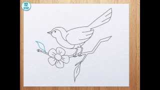 How to draw bird