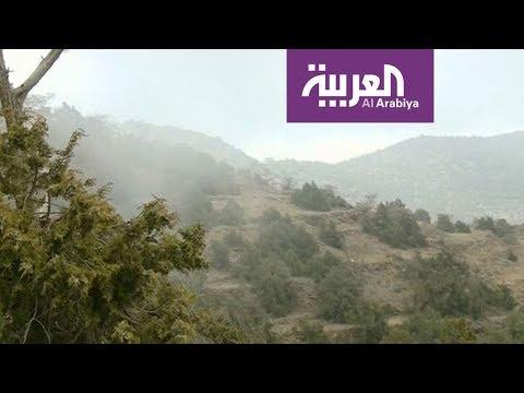 زيارة لغابة رغدان في الباحة السعودية