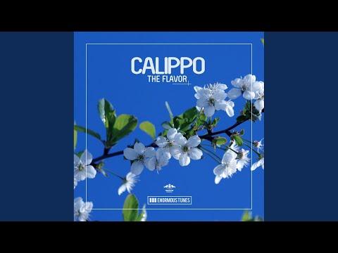 The Flavor (Instrumental Mix)