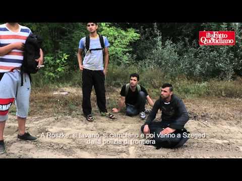 reportage sui migranti in ungheria: condizioni quasi disumane!