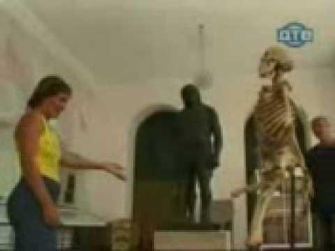 Un squelette qui a la gaule !