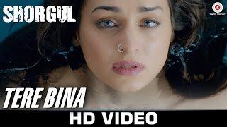 Tere Bina Video Song SHORGUL Niladri Kumar Kapil Sibal