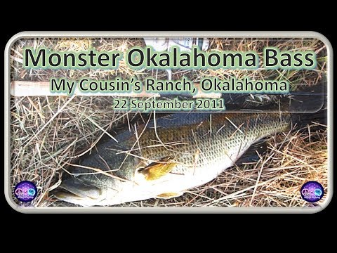 TOPWATER BASS, Oklahoma Farm Pond Fishing Largemouth Bass September 21 23 2011