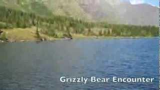 Video Grizzly Bear Encounter Glacier National Park, Montana 9-14-2013 MP3, 3GP, MP4, WEBM, AVI, FLV Juni 2017