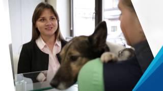 Услуги для мелких домашних животных