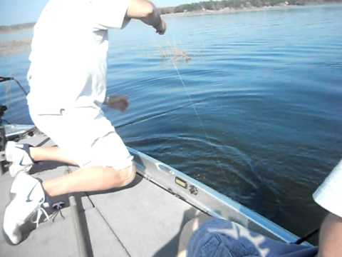 Catching bass with JIGDINGER bait!!!!!