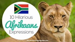 Learn how to speak Afrikaans with these funny Afrikaans idioms and Afrikaans expressions. These Afrikaans idioms will have you in stitches. Included in this ...