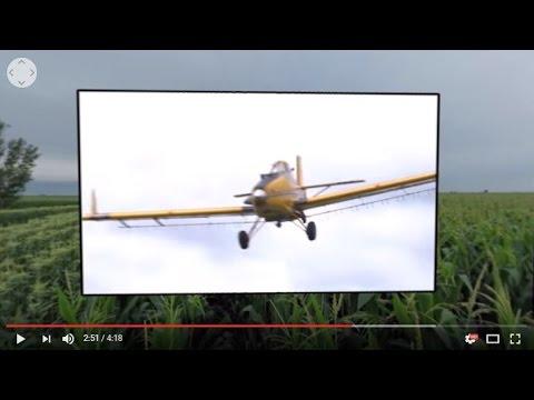 Illinois HomeGrown Corn Video 2