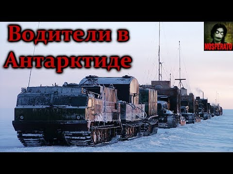Истории на ночь - Водители в Антарктиде (видео)