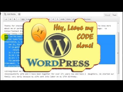 How To Stop WordPress From Changing HTML/Code/JavaScript Within A Blog Post