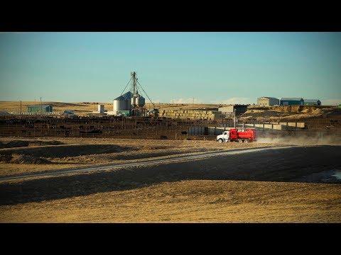 Schiff Farms of Nebraska: Jaylor H1950 Quad Auger TMR Truck Mounts