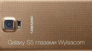Samsung Galaxy S5глазами Wylsacom