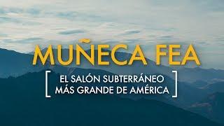 Acompaña a nuestro explorador Gustavo Vela Turcott en esta Expedición que realizó en la Sierra Negra, al sur del Estado de Puebla, donde se encuentra un salón subterráneo de grandes magnitudes. Te llevamos hasta las profundidades de la tierra para descubrir ese lugar inhóspito de México. Descubre más aventuras y expediciones por México en: https://expediciones.mexicodesconocido.com.mx/Si te gustó el video ¡no olvides darle LIKE, COMPARTIRLO  y SUSCRIBIRTE:  http://goo.gl/0LtODu
