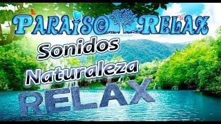 En este vídeo encontrareis una cascada Relajante con sonidos de pájaros que os Relajaran y os darán paz a la vez que os acercan la Naturaleza.Relax, Entretenimiento y Mucho Mas están al alcance de tu mano ¿ a que esperas? Entra y Suscribete, Nuevos videos cada semana. Facebook: http://www.facebook.com/paraisorelax.relaxymeditacionGoogle+: http://plus.google.com/u/0/b/117441914635747685373/117441914635747685373/postsEl canal de Youtube PARAISO RELAX es el único canal de Youtube que no se centra en un solo tema, su variedad es inmensa, cubriendo todas las necesidades en cada momento de grandes y pequeños.  ¿Te lo Vas a Perder? Te espero con los brazos Abiertos