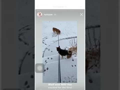 Hailie Jade's voice finally heard on Instagram!