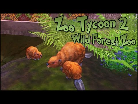 Groves of Baby Beavers & Blueberry Beaks!! • World Zoo Season 3 - Episode #5
