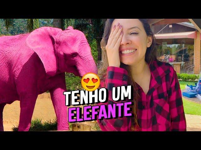 TEM UM ELEFANTE ROSA NA CHÁCARA !!! - Taciele Alcolea