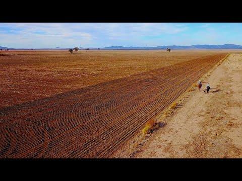 Ανεπανάληπτη ξηρασία-Έκτακτη οικονομική ενίσχυση