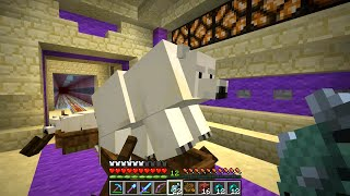Minecraft survival. After a little mishap, we journey out to look for some polar bears. Then we take on the challenge of building an analog clock in Minecraf...