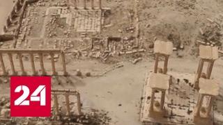 Тетрапилона больше нет: террористы ИГИЛ взрывают античные памятники Пальмиры