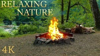 Relaxing nature sounds with 4K campfire crackling and calming river forest sound to sleep and meditation, soothing nature sounds to sleep and nature meditation, fire and water relaxation.Playlist NATURE SOUNDS: https://www.youtube.com/playlist?list=PLYwFNfjiOd7OsZHH1EJQ42nxi5zsDDvMZ